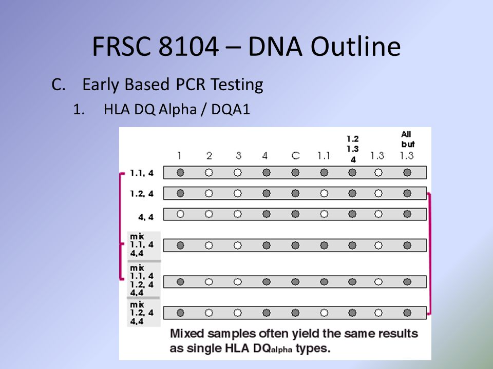 C.Early Based PCR Testing 1.HLA DQ Alpha / DQA1 FRSC 8104 – DNA Outline