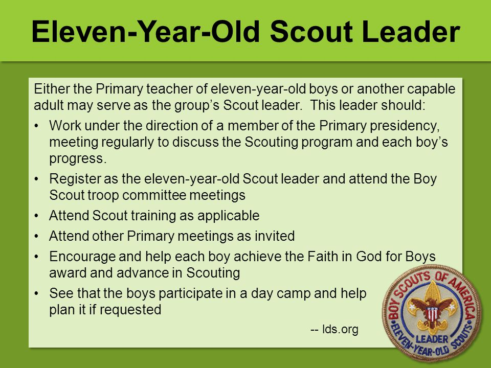 Either the Primary teacher of eleven-year-old boys or another capable adult may serve as the group's Scout leader. This leader should: Work under the