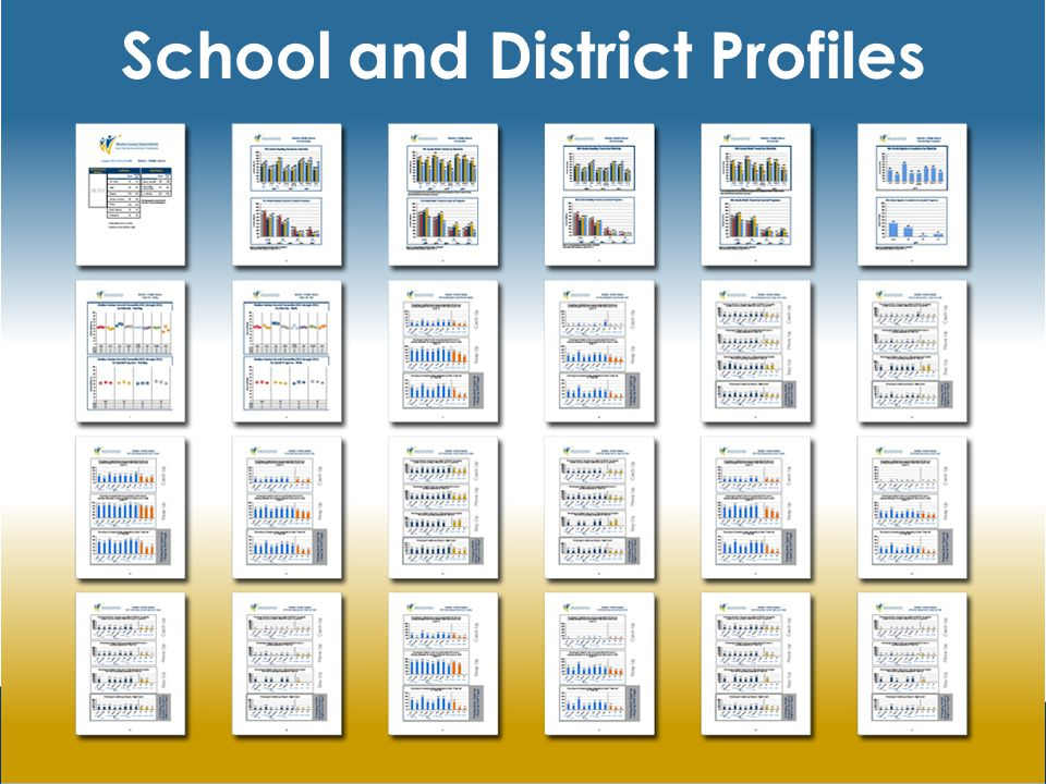 School and District Profiles