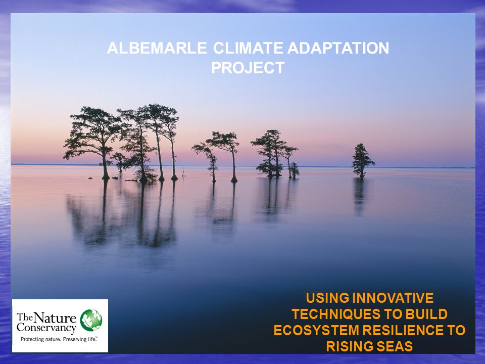 ALBEMARLE CLIMATE ADAPTATION PROJECT USING INNOVATIVE TECHNIQUES TO BUILD ECOSYSTEM RESILIENCE TO RISING SEAS