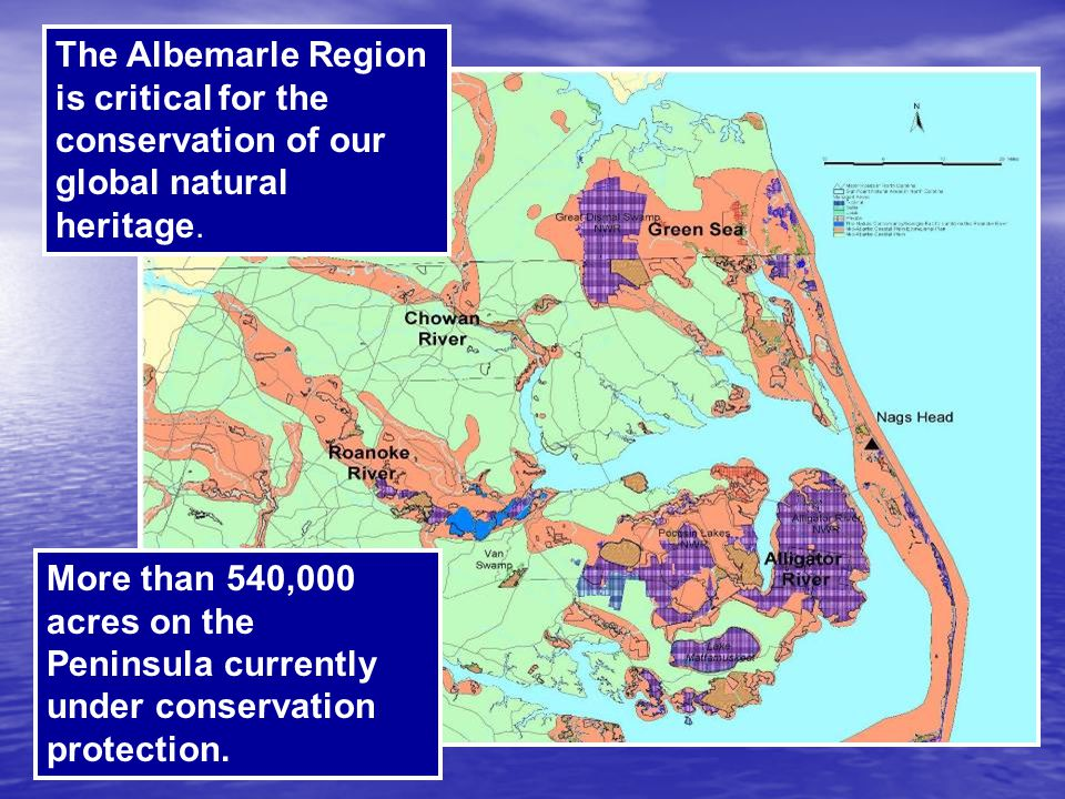 The Albemarle Region is critical for the conservation of our global natural heritage.