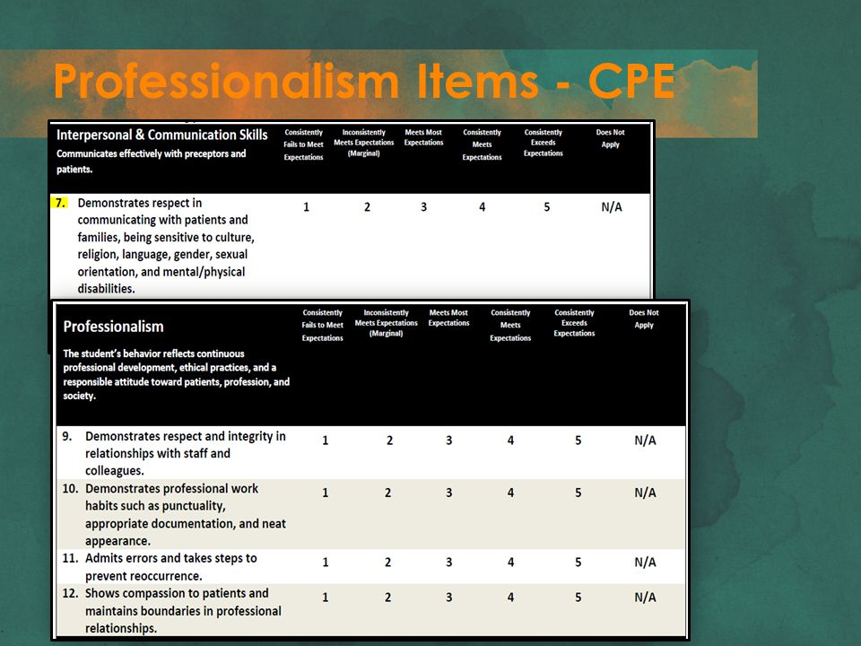Professionalism Items - CPE