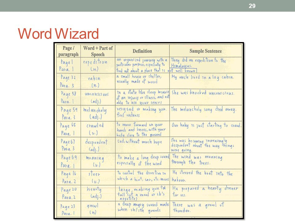 Word Wizard 29