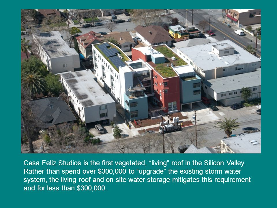 Casa Feliz Studios is the first vegetated, living roof in the Silicon Valley.