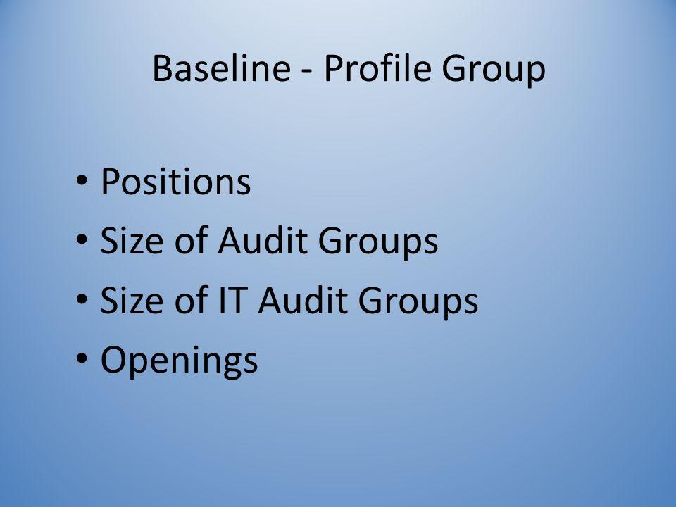 Baseline - Profile Group Positions Size of Audit Groups Size of IT Audit Groups Openings