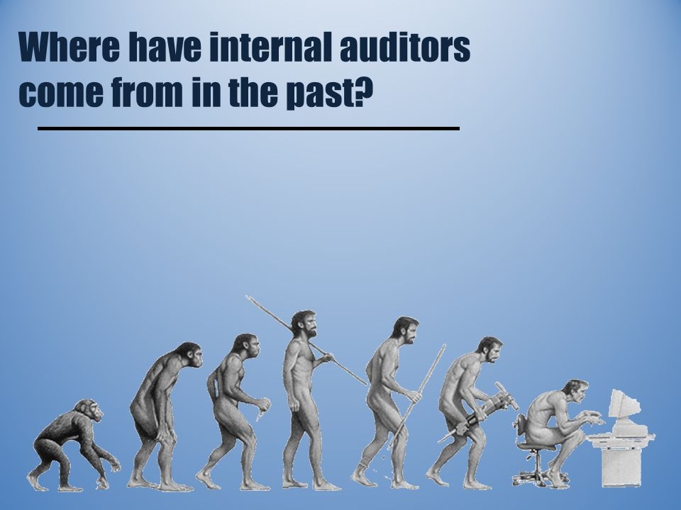 Where have internal auditors come from in the past