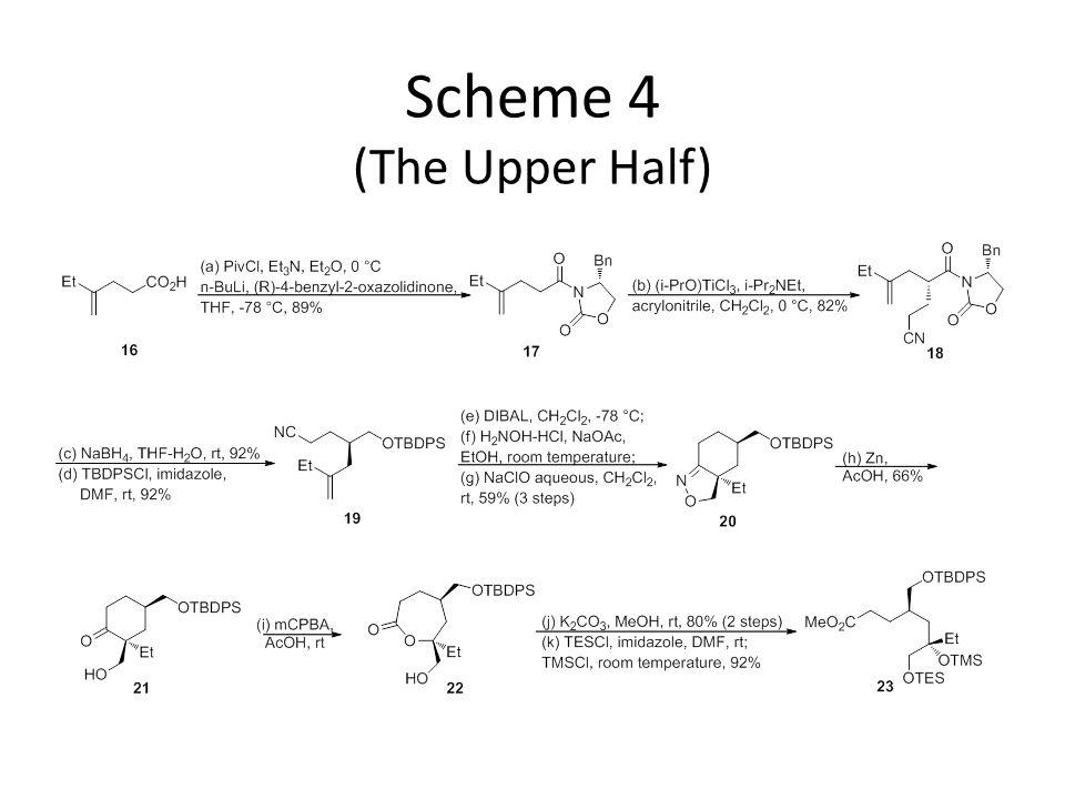 Scheme 4 (The Upper Half)