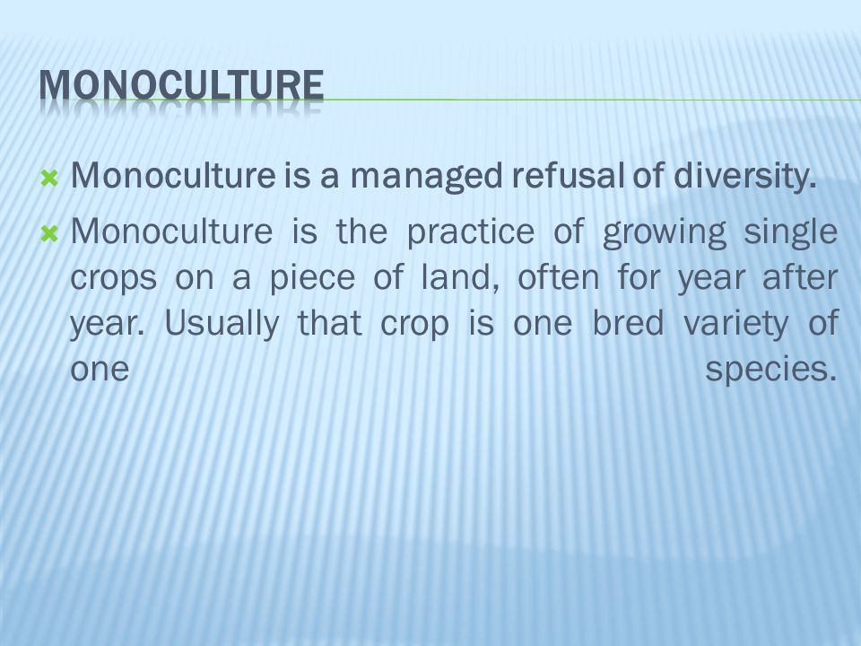  Monoculture is a managed refusal of diversity.