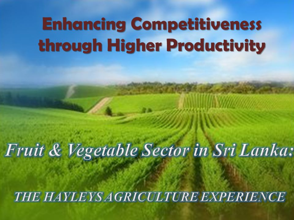 Enhancing Competitiveness through Higher Productivity