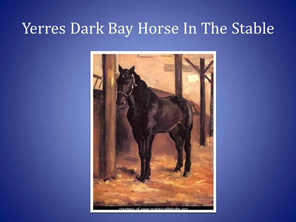 Yerres Dark Bay Horse In The Stable