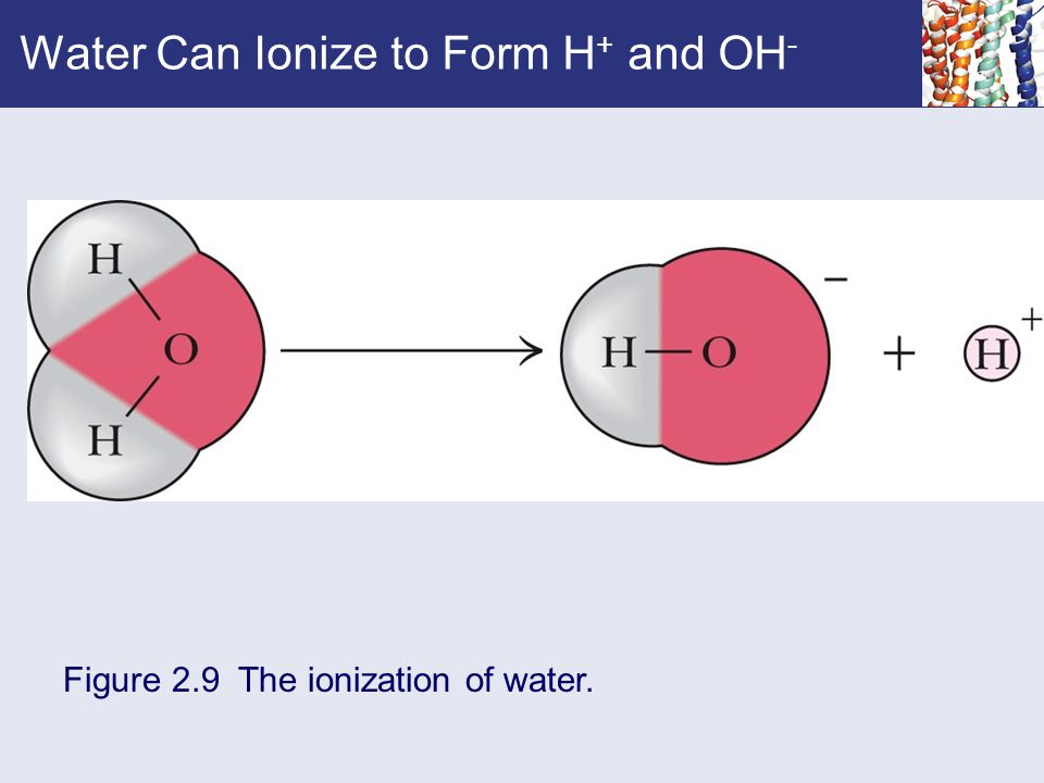 Figure 2.9 The ionization of water.