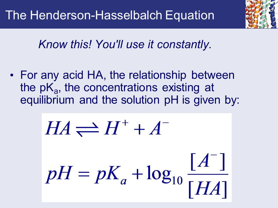 The Henderson-Hasselbalch Equation Know this. You ll use it constantly.