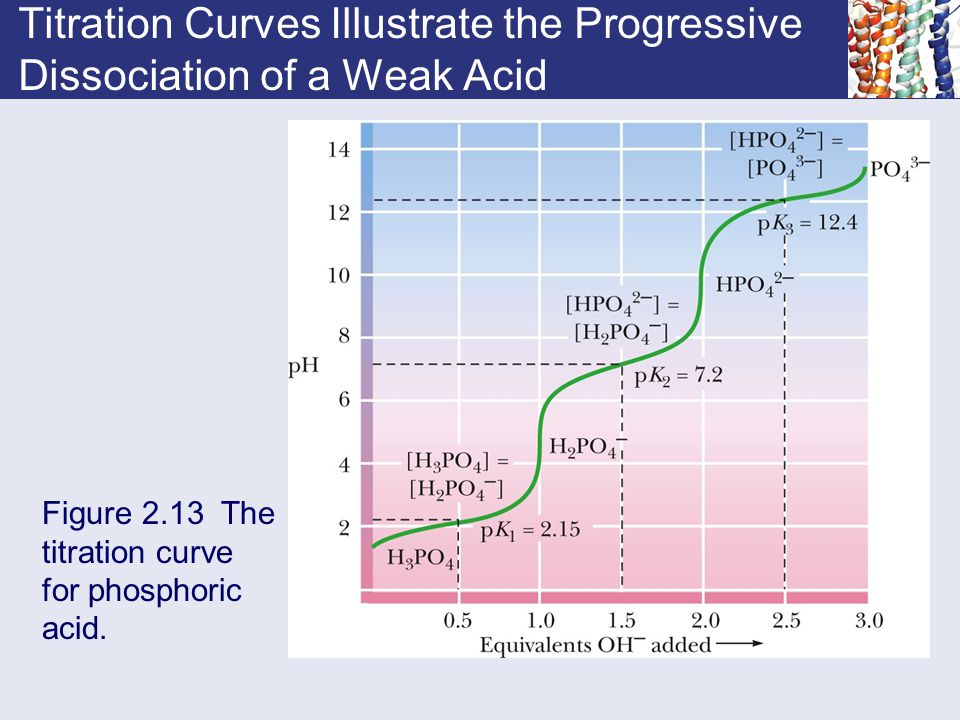 Titration Curves Illustrate the Progressive Dissociation of a Weak Acid Figure 2.13 The titration curve for phosphoric acid.