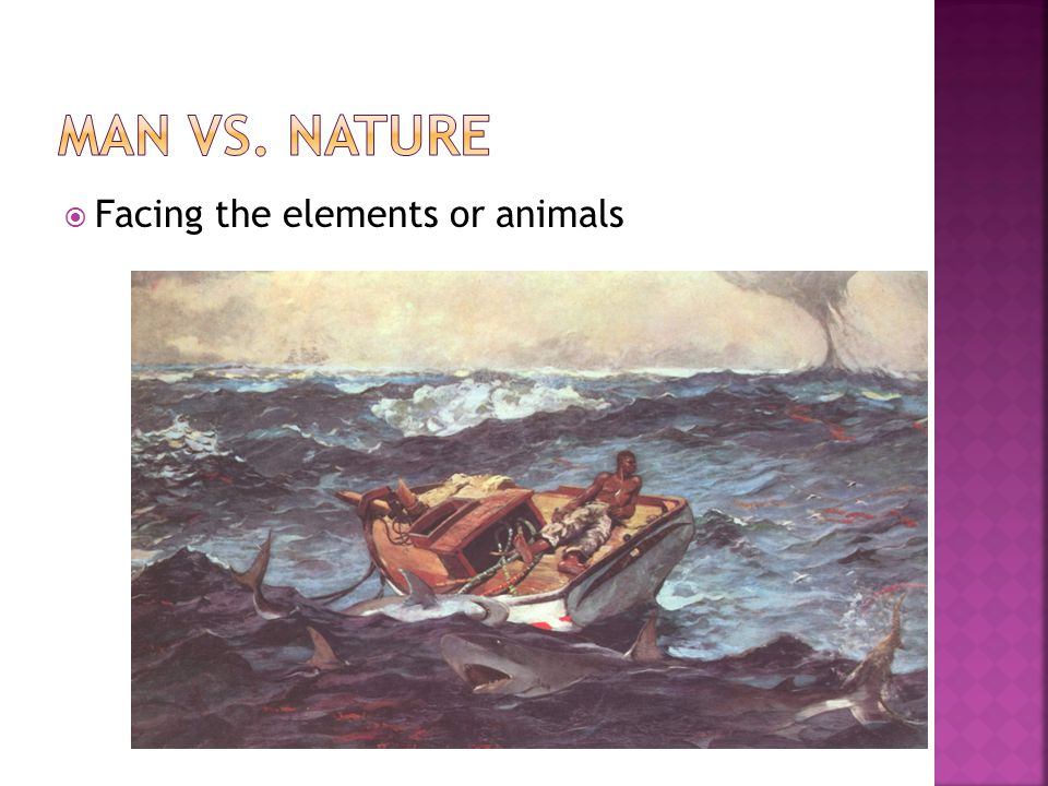 Facing the elements or animals
