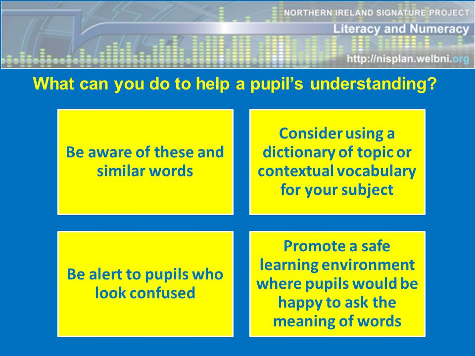 What can you do to help a pupil's understanding?