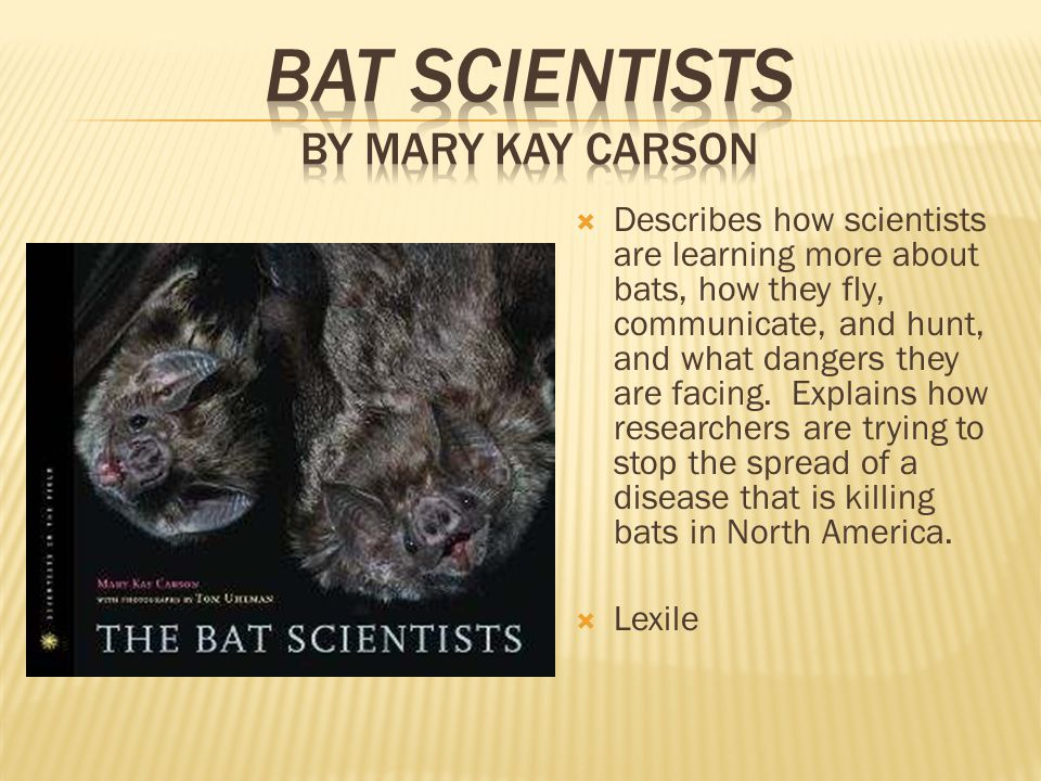  Describes how scientists are learning more about bats, how they fly, communicate, and hunt, and what dangers they are facing.