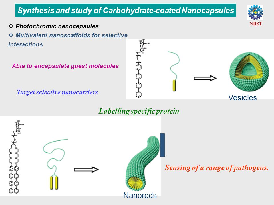 Able to encapsulate guest molecules Synthesis and study of Carbohydrate-coated Nanocapsules Target selective nanocarriers Labelling specific protein Sensing of a range of pathogens.
