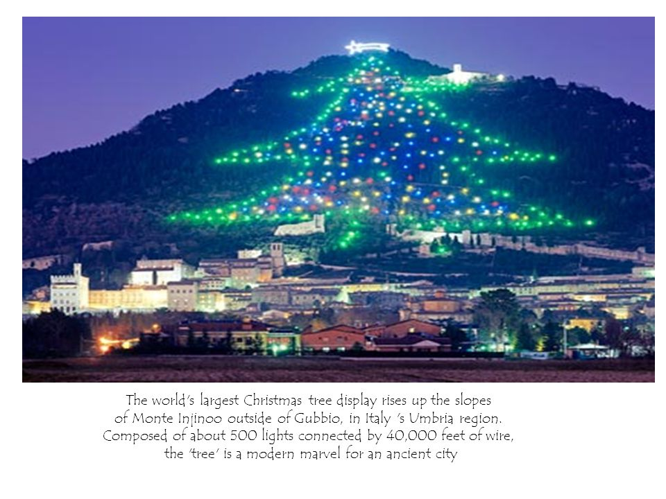The world s largest Christmas tree display rises up the slopes of Monte Injinoo outside of Gubbio, in Italy s Umbria region.