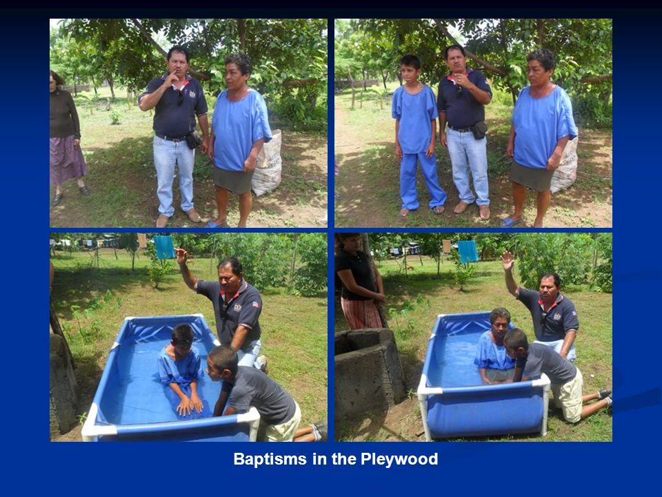Baptisms in the Pleywood