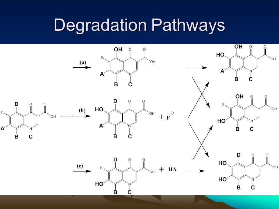Degradation Pathways