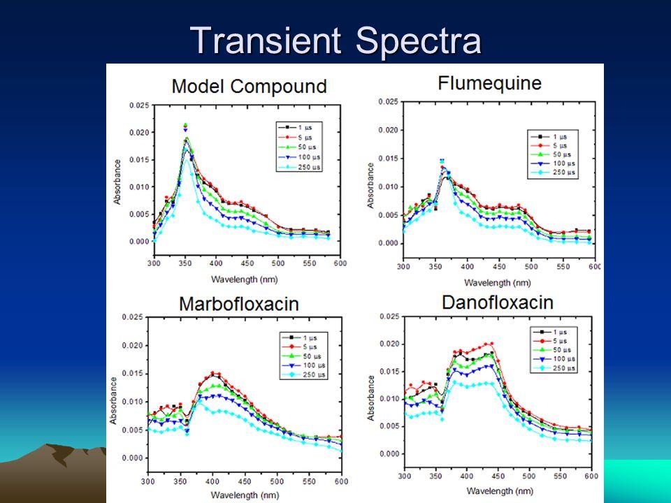 Transient Spectra