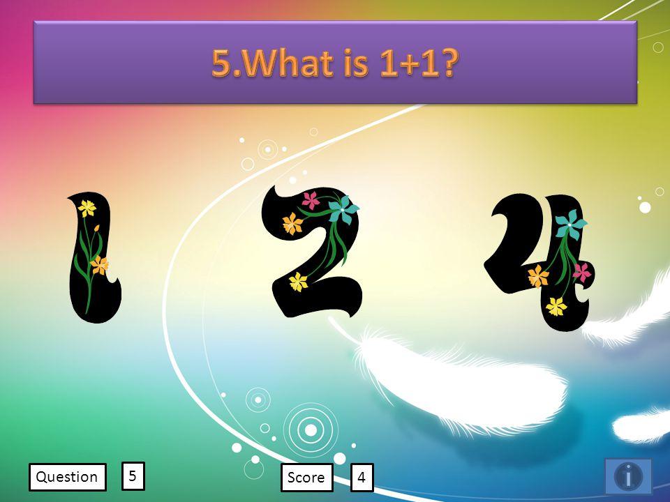 Question 5 Score4
