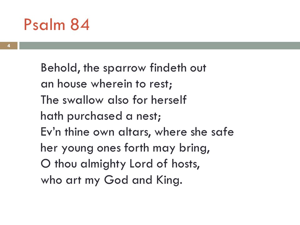 Psalm 84 Behold, the sparrow findeth out an house wherein to rest; The swallow also for herself hath purchased a nest; Ev'n thine own altars, where she safe her young ones forth may bring, O thou almighty Lord of hosts, who art my God and King.
