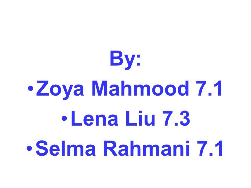 By: Zoya Mahmood 7.1 Lena Liu 7.3 Selma Rahmani 7.1