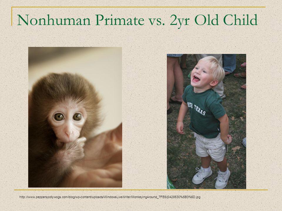 Nonhuman Primate vs. 2yr Old Child http://www.pepperspollywogs.com/blog/wp-content/uploads/WindowsLiveWriter/MonkeyingAround_7FE6/j0428530%5B3%5D.jpg