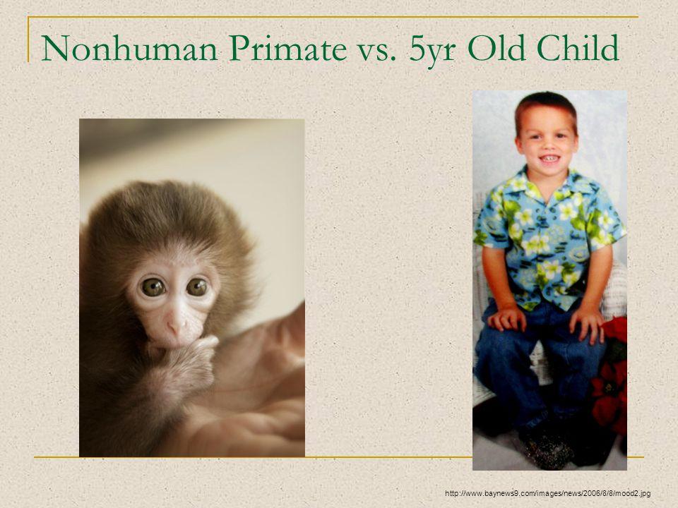Nonhuman Primate vs. 5yr Old Child http://www.baynews9.com/images/news/2006/8/8/mood2.jpg