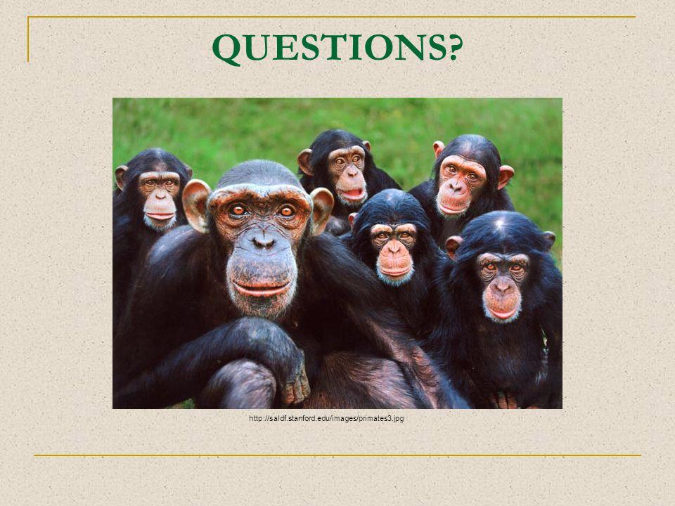 QUESTIONS? http://saldf.stanford.edu/images/primates3.jpg