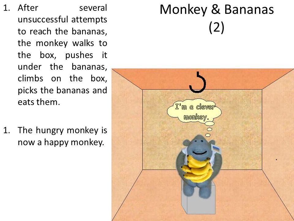 Monkey & Bananas (2) 1.After several unsuccessful attempts to reach the bananas, the monkey walks to the box, pushes it under the bananas, climbs on the box, picks the bananas and eats them.