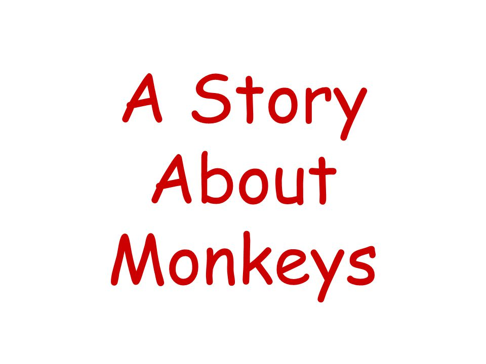 A Story About Monkeys