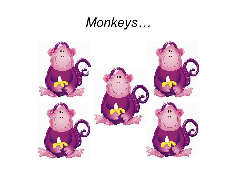 Monkeys…