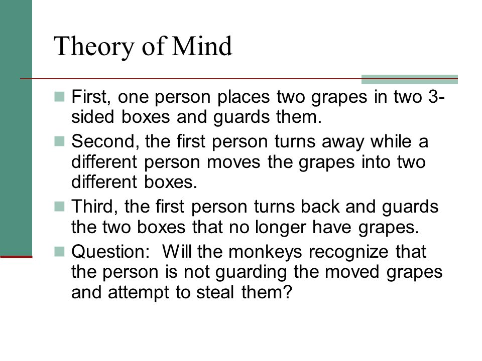 Theory of Mind First, one person places two grapes in two 3- sided boxes and guards them. Second, the first person turns away while a different person