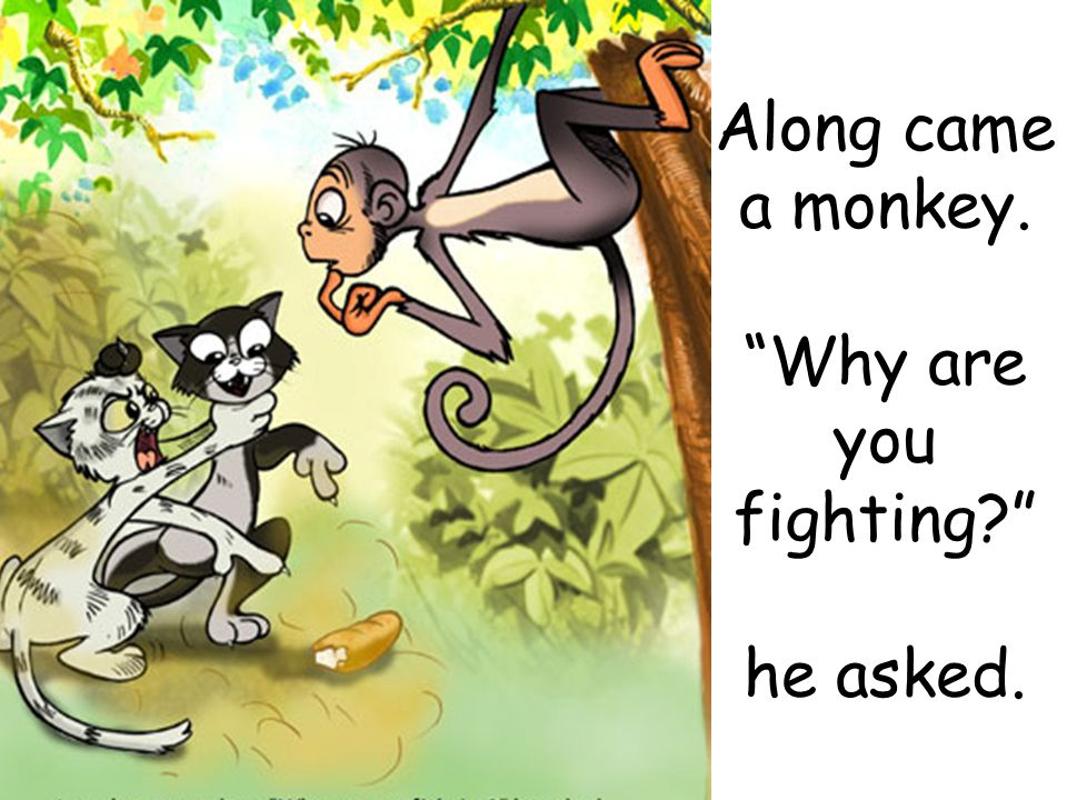 Along came a monkey. Why are you fighting? he asked.