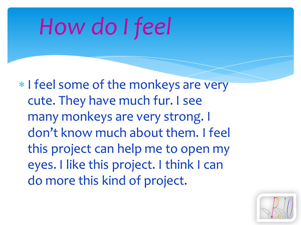  I feel some of the monkeys are very cute. They have much fur. I see many monkeys are very strong. I don't know much about them. I feel this project