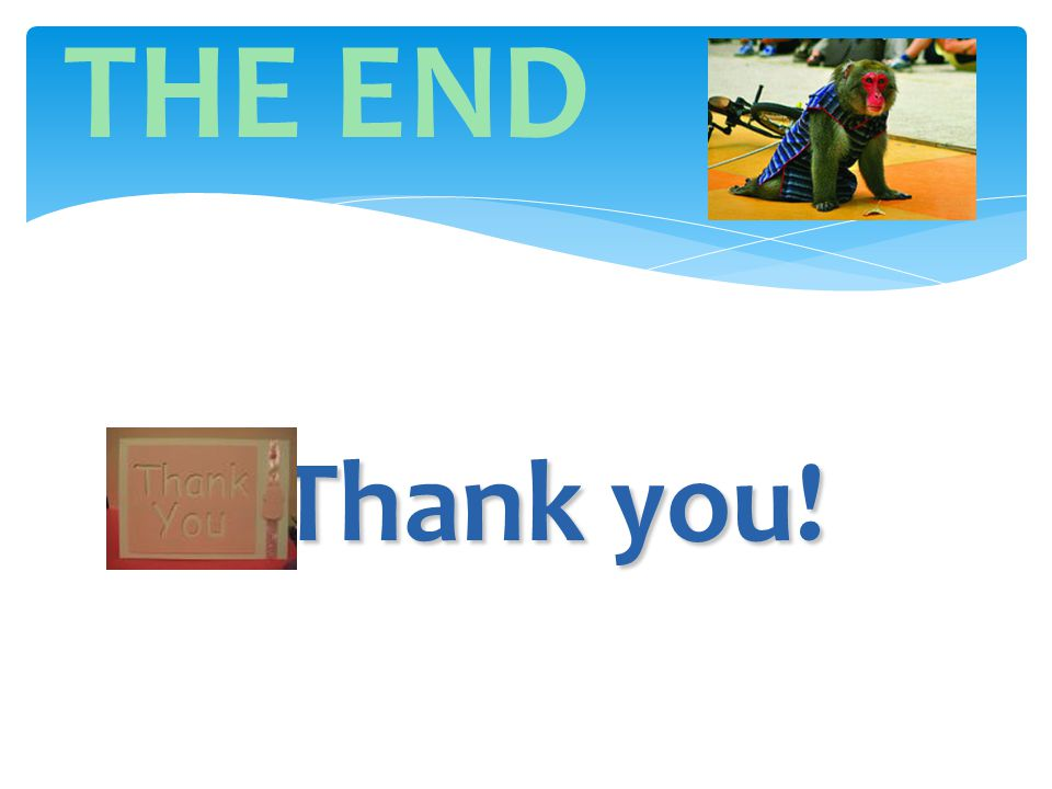 THE END Thank you! Thank you!