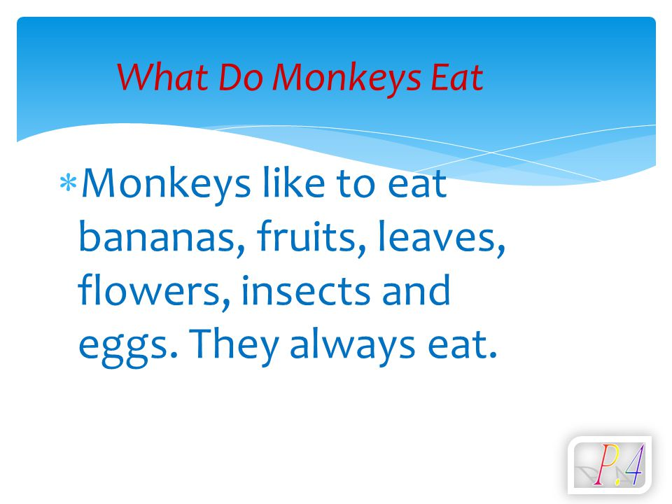  Monkeys like to eat bananas, fruits, leaves, flowers, insects and eggs. They always eat. What Do Monkeys Eat