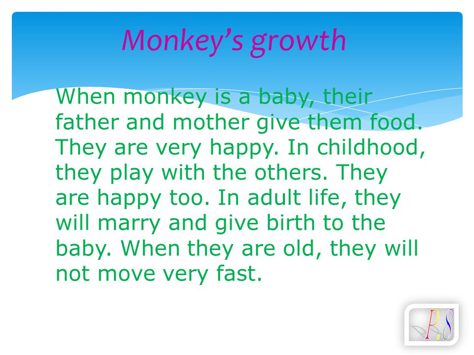 Monkey's growth When monkey is a baby, their father and mother give them food. They are very happy. In childhood, they play with the others. They are