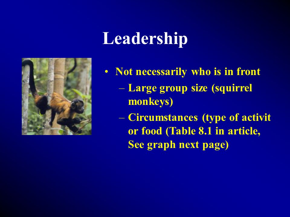 Leadership Not necessarily who is in front –Large group size (squirrel monkeys) –Circumstances (type of activit or food (Table 8.1 in article, See graph next page)