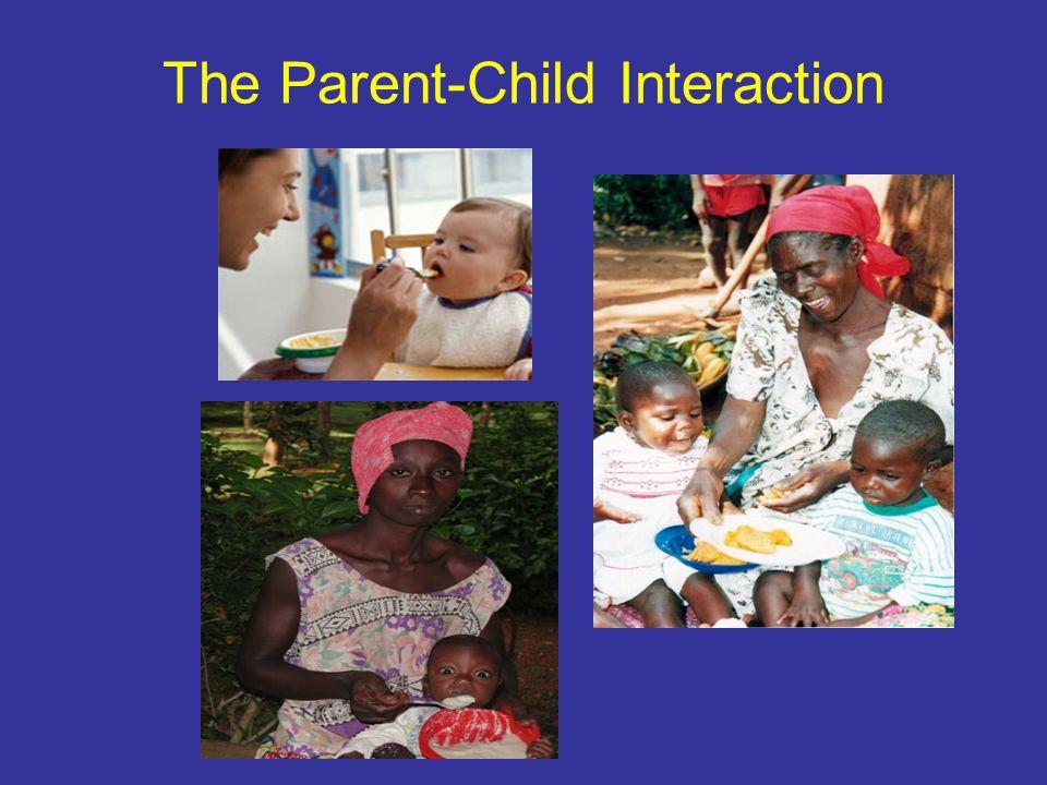 The Parent-Child Interaction