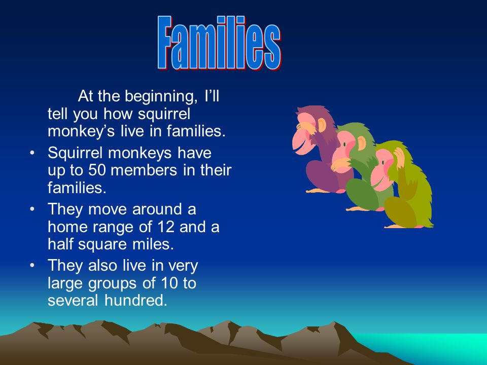 At the beginning, I'll tell you how squirrel monkey's live in families.