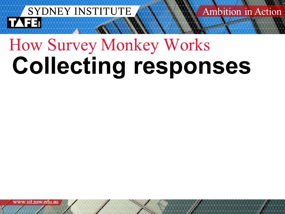 Ambition in Action www.sit.nsw.edu.au How Survey Monkey Works Collecting responses