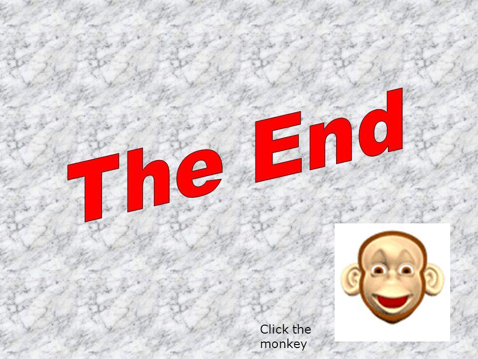 Click the monkey