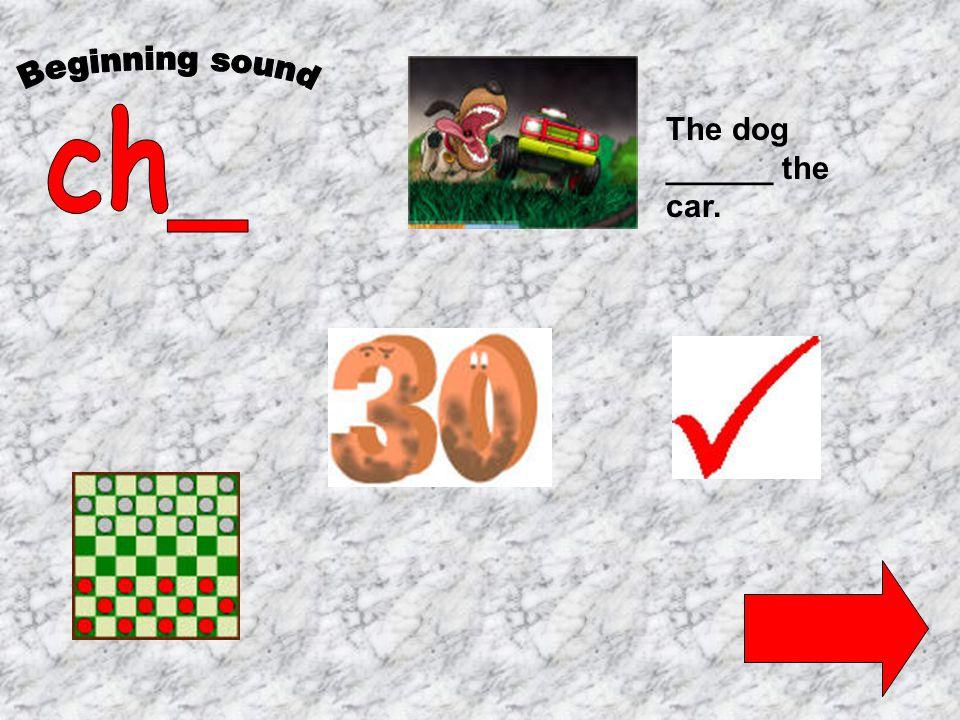 The dog ______ the car.