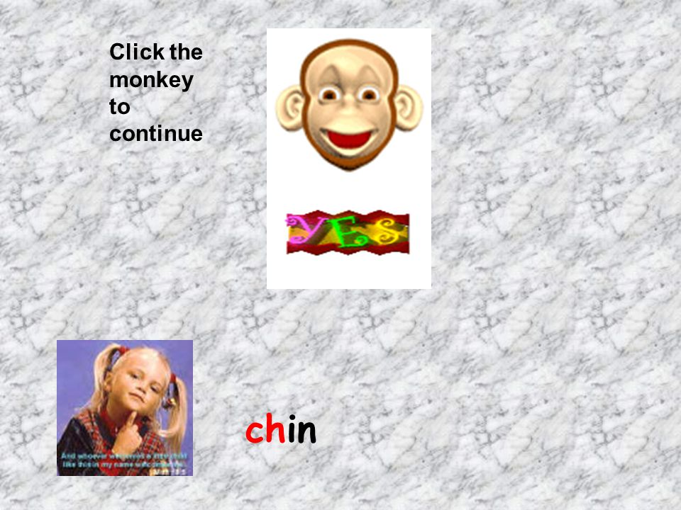 Click the monkey to continue chin