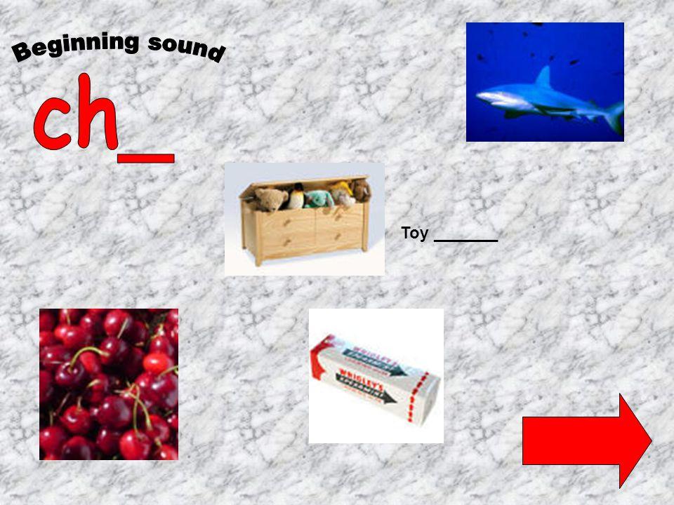Toy _______