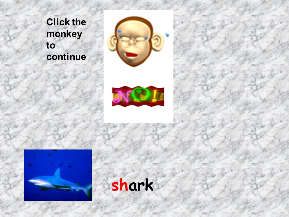 Click the monkey to continue shark