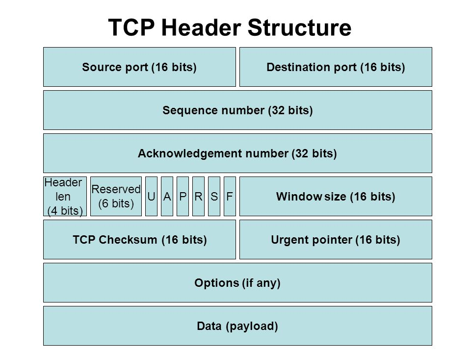 Options (if any) TCP Checksum (16 bits) Data (payload) Urgent pointer (16 bits) Window size (16 bits) Acknowledgement number (32 bits) Sequence number (32 bits) Source port (16 bits)Destination port (16 bits) TCP Header Structure Header len (4 bits) Reserved (6 bits) UAPRSF